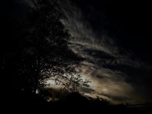 Ночь наступает