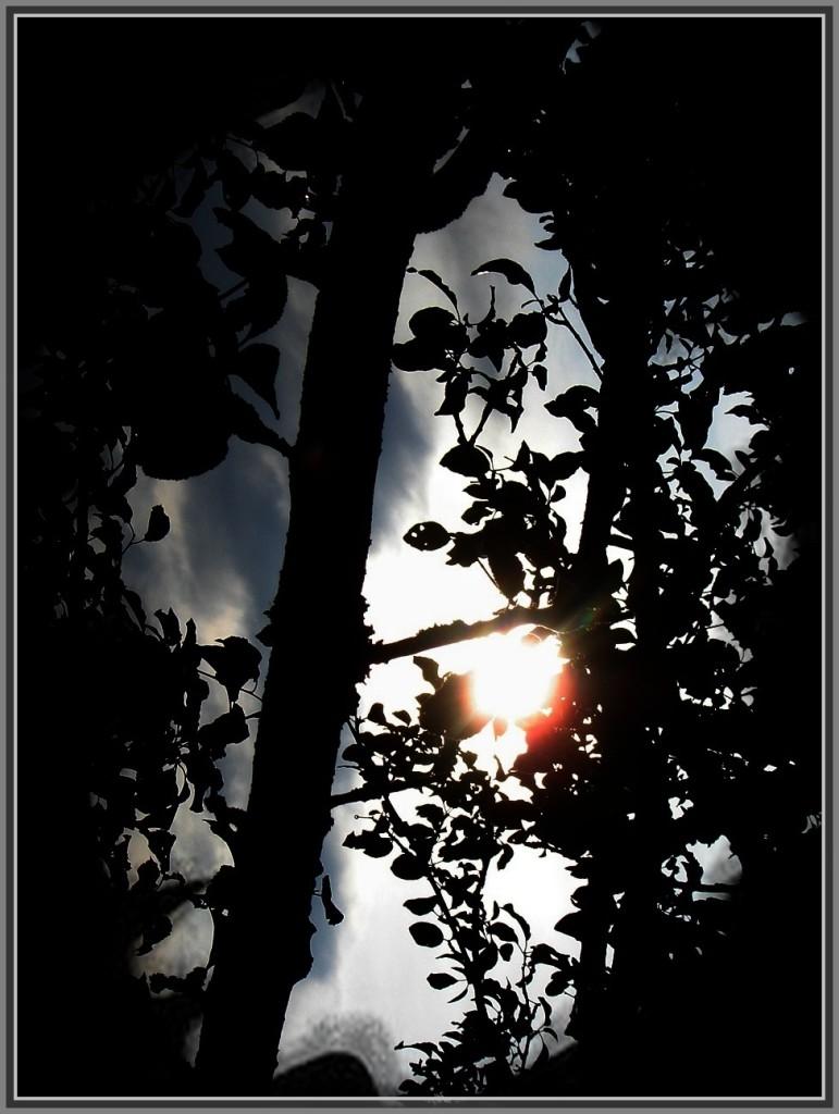 И восходит солнце