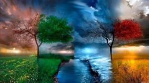 цвет жизни_n