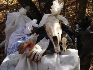 череп и мешки3
